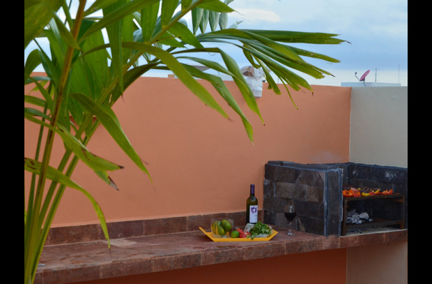 Your Private Roof Top BBQ w/Prep Area and Sink