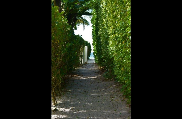 Our deeded beach path! Quiet area to spread out in